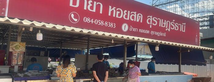 ป้ายาหอยสด is one of Surat Thani-Nakhon Sithammarat.