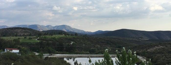 Gespeicherte Orte von Florería