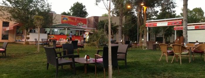 Troll Fitness&cafe is one of Posti che sono piaciuti a Ayşegul.