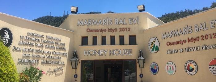 Marmaris Bal Evi is one of Locais curtidos por Gülnur.