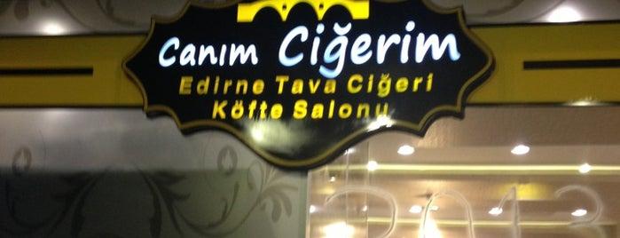 Canım Ciğerim Edirne Tava ve Köfte Salonu is one of Orte, die Orhan gefallen.