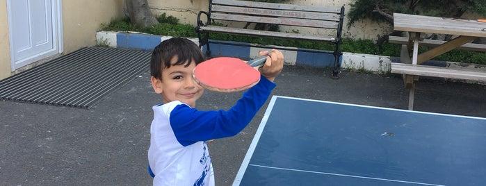 Mashattan Tenis Kortu is one of Istanbul.