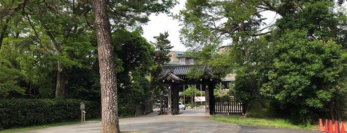 蛤御門の変(禁門の変)の弾痕 is one of 西郷どんゆかりのスポット.