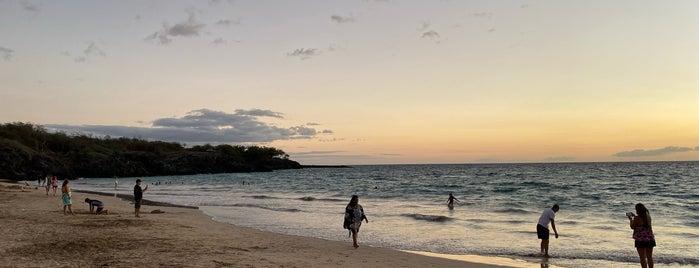 Hāpuna Beach State Recreation Area is one of Lieux sauvegardés par K.