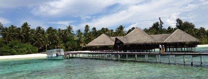 Medhufushi Island Resort is one of Lieux qui ont plu à Suheyla.