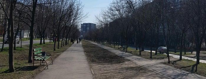 Аллея На Булваре Михаила  Грушевского is one of Gespeicherte Orte von Y.Byelbblk.