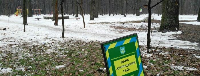 Парк «Сирецький гай» is one of объекты.