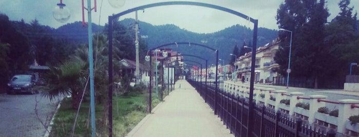 Armutalan Yürüyüş Yolu is one of Tempat yang Disukai Özge.