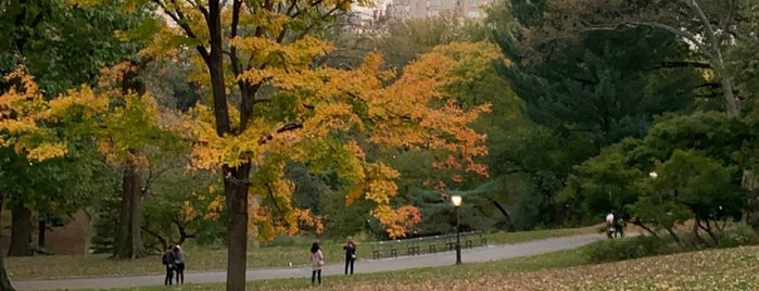Central Park - Cat Hill - Still Hunt By Edward Kemeys is one of Tempat yang Disukai Will.