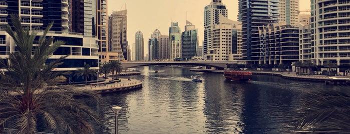 Marina Social is one of The Dog's Bollocks' Dubai.