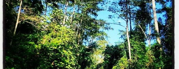 Khao Yai National Park is one of Gespeicherte Orte von Weerapon.