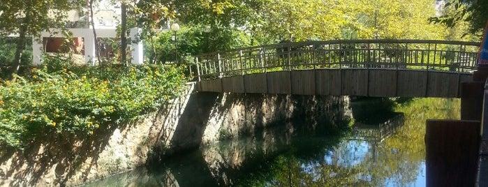 Atatürk Parkı is one of Yunus'un Beğendiği Mekanlar.