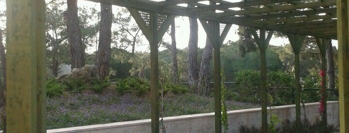 BELLIS Horse Riding & Zoo is one of Antalya.