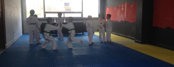Taekwondo Iridia Salazar is one of Recomendados en México, D.F..