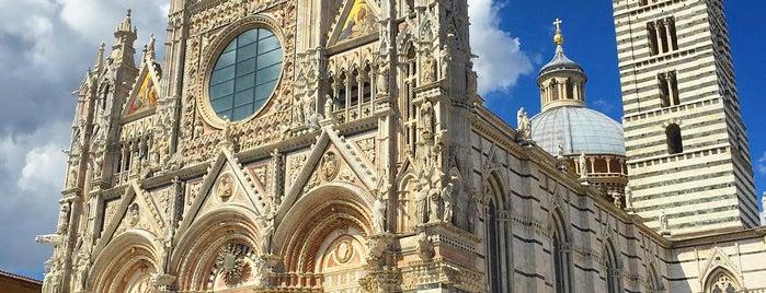 Complesso Museale Santa Maria Della Scala is one of SIENA - ITALY.
