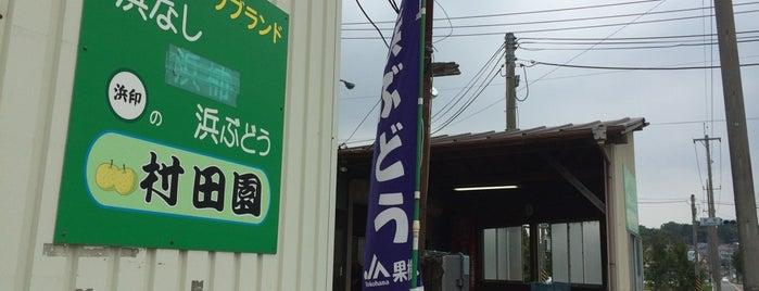 村田園 is one of とり'ın Beğendiği Mekanlar.