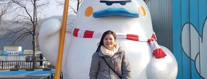 Skyline Zipwire is one of South Korea.