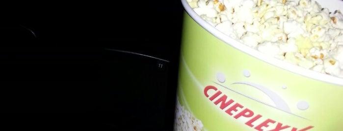 Cineplexx is one of +381642216944#.
