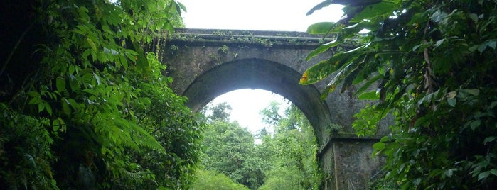 Rivière Dumauzé is one of Rivières, étangs, cours d'eau de Martinique.