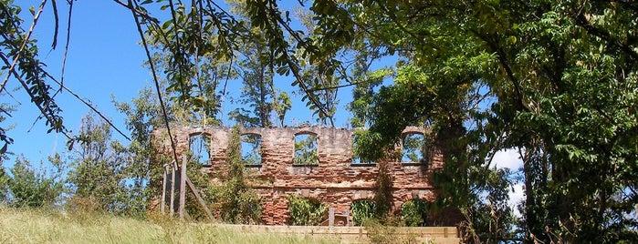 Parcours santé du Morne Cabri is one of Forêts, lieux de balade en nature en Martinique.