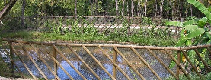 Parcours santé du Morne Cabri is one of Rivières, étangs, cours d'eau de Martinique.