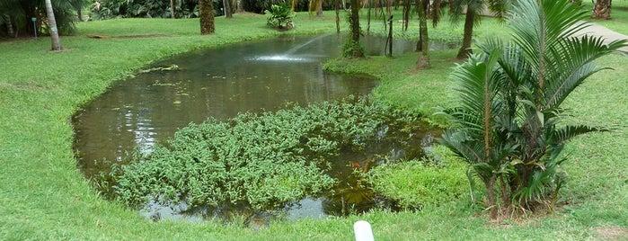Habitation Clément is one of Rivières, étangs, cours d'eau de Martinique.