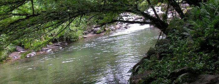 Coeur Bouliki is one of Rivières, étangs, cours d'eau de Martinique.