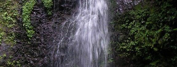 Saut Gendarme is one of Rivières, étangs, cours d'eau de Martinique.