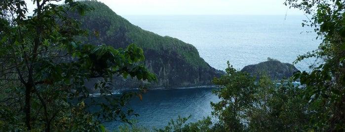Forêt La Philippe is one of Forêts, lieux de balade en nature en Martinique.