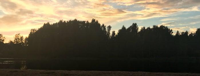 Финское озеро is one of Аннаさんのお気に入りスポット.