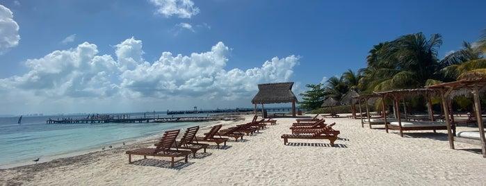 Playa Indio is one of Isla mujeres.