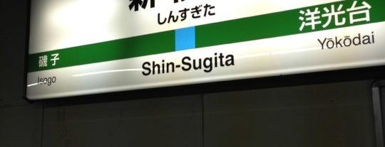 Shin-Sugita Station is one of JR 미나미간토지방역 (JR 南関東地方の駅).