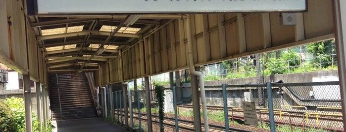 Komaba-tōdaimae Station (IN03) is one of Darwin'in Beğendiği Mekanlar.