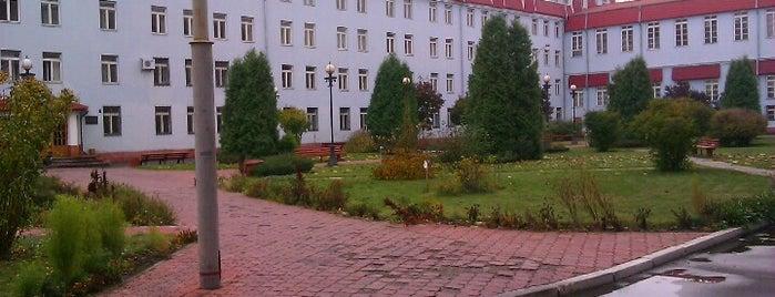 Київський національний економічний університет імені В. Гетьмана, корпус 5 is one of mesta.