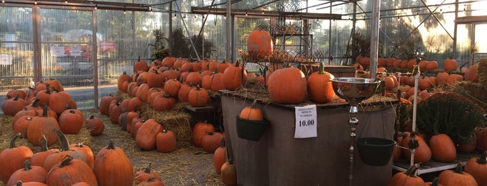 Country Pumpkin Patch is one of A Guide to Vancouver (& suburbia).