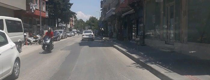 Kurtuluş Caddesi is one of Hatay.