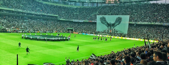 Vodafone Park is one of Orte, die Burç gefallen.