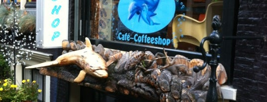 The Dolphins is one of coffeeshops.