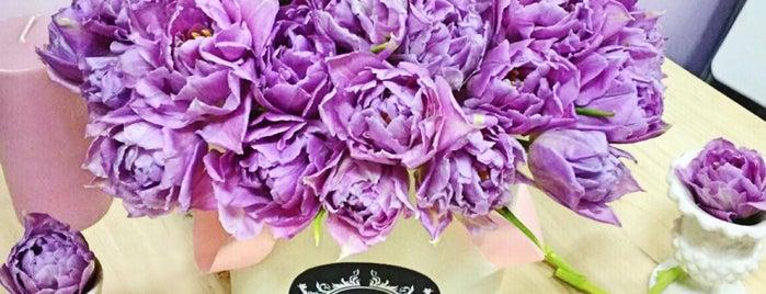 JASMIN Flower Studio is one of Locais salvos de Ksenia.