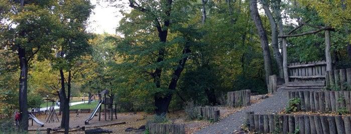 Spielplatz im Volkspark Friedrichshain is one of Orte, die Daniel gefallen.