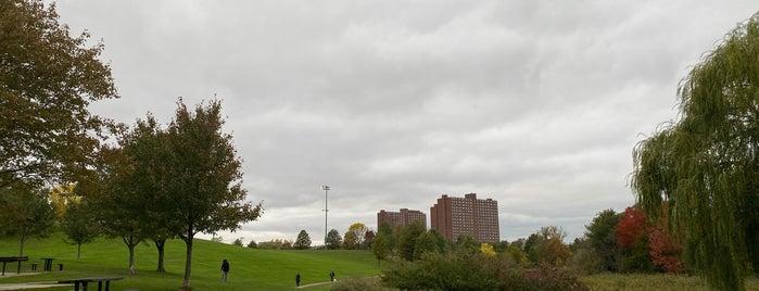 Danehy Park is one of Lugares favoritos de Emilia.