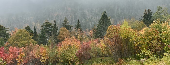 White Mountain National Forest is one of National Recreation Areas.