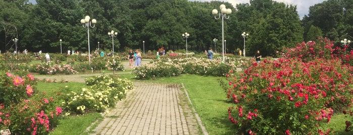 Главный ботанический сад РАН им. Н. В. Цицина is one of สถานที่ที่ Marina ถูกใจ.