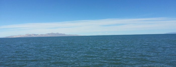 Great Salt Lake State Park is one of Carlさんのお気に入りスポット.