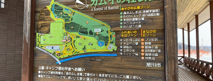 カムイの杜公園 is one of Great places to visit with kids.