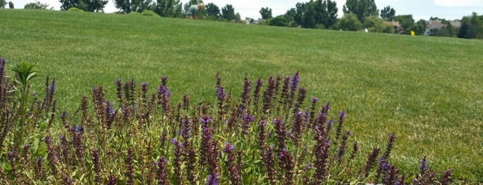 Southridge Golf Course is one of Locais curtidos por Dave.