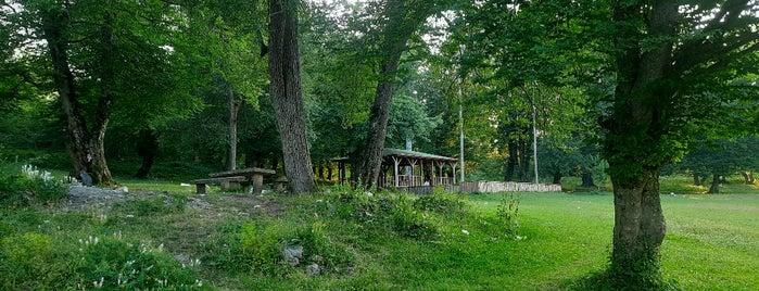 Türkiye'nin Pek Bilinmeyen 5 Saklı Cenneti