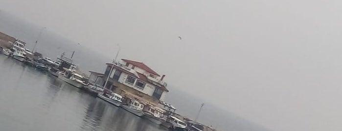 Yıldız Motel is one of Gidilecek.