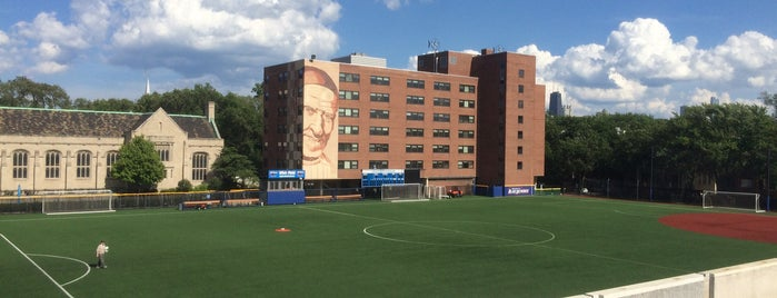 Wish Field/Cacciatore Stadium is one of Lincoln Park Campus History.