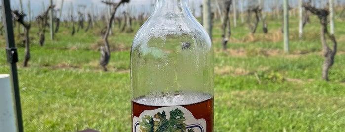 Kreutz Creek Winery is one of Local Wineries/Vineyards.